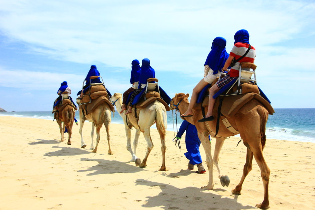 group of people riding camels in a desert scene near seashore